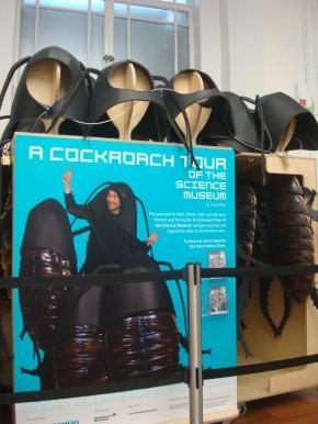 A Cockroach Tour